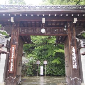 ポリフェノールさんの京都散歩 青蓮院門跡を訪ねて