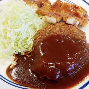 コダマちゃん「レストラン亜樹」さんに行く
