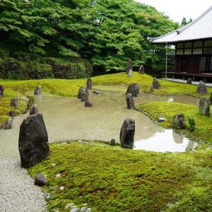 ポリフェノールさんの京都散歩 雨上がりの光明院