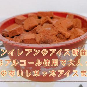 セブンイレブンのアイス新商品、生チョコにアルコール使用で大人っぽい味に 9月のおいしかったアイスまとめ