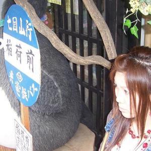 【女一人旅】(岡山県倉敷市)美観地区、いがらしゆみこ、美術館、となりのトトロ、むらすずめ
