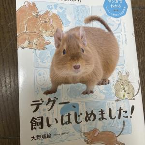 デグーの書籍