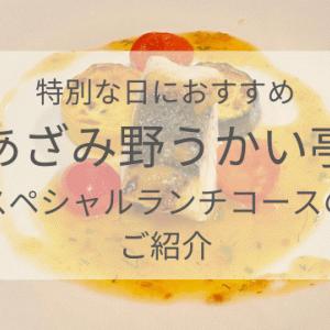 【記念日ごはん】あざみ野うかい亭でお誕生日のお祝い