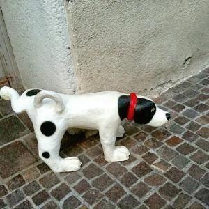 【犬おしっこ消臭】愛犬が床に粗相した!簡単・安全に消臭する方法