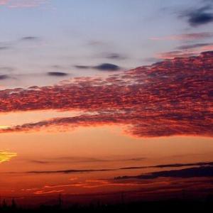スピッツの「夏が終わる」。うろこ雲が浮かぶ秋空に重ねる切なさ