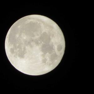中秋の名月と青いお空
