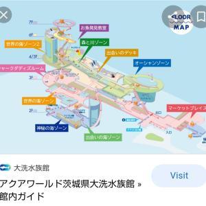 【茨城】水戸、大洗1泊2日激安旅2日目②