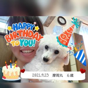 Happy Birthday摩周丸