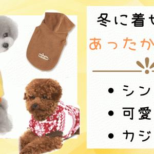犬の寒さ対策に!寒い季節の暖かくて可愛いお洋服17選