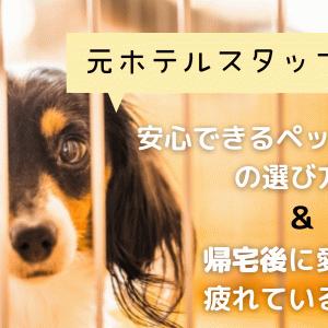 安心して預けられるペットホテルの選び方は?ホテルから帰ると愛犬が疲れている理由とは?
