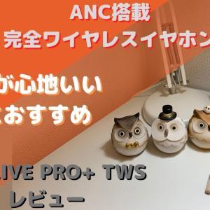 【JBL LIVE PRO+ TWSレビュー】気軽さが心地いい女性におすすめのANC搭載完全ワイヤレスイヤホン