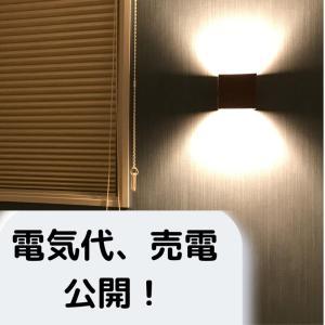 ALL電化-電気代売電額公開-