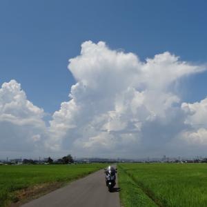 連日の猛暑、空には巨大な入道雲
