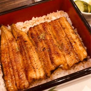 藤沢にある美味しい鰻屋さん「宮川本廛 」で暑気払い♪