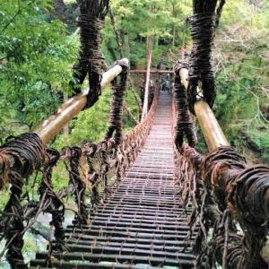 祖谷のかずら橋 祖谷のこひき歌