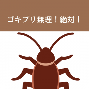 【今すぐできる!】我が家のゴキブリ対策3選。絶対に出さないためにやっていること。