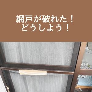【初めて!】網戸の張り替えを、業者さんにお願いした手順と感想!