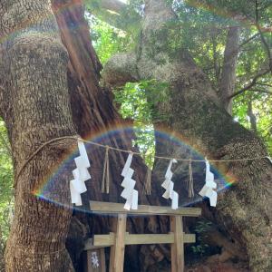 導かれないと訪れることができない、日本一不思議なハンコ屋とは?