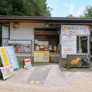 【スポット】 須坂市動物園 長野県須坂市