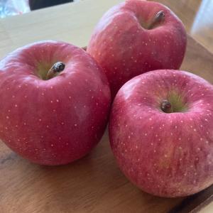 青森りんごをいただきました