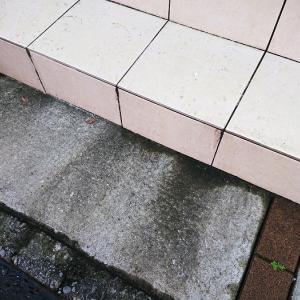 玄関前のコンクリートを【ダイソー】セスキクリーナーでゴシゴシ洗ってみた!