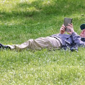 芝生を放置して伸び過ぎてしまった時の対処法【計画的軸刈りもあり】