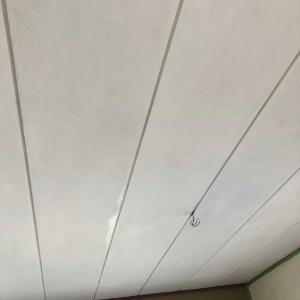 『実質7日 足掛け8ヶ月の和室天井ペンキ塗り』と団長の話し❣️