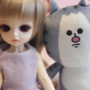 新しい人形とまめきちまめこさんchibiぬいぐるみ