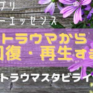 【心のサプリ:フラワーエッセンス】トラウマから回復・再生するポストトラウマ・スタビライザー