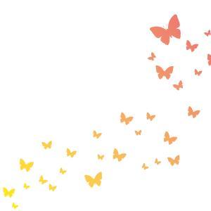 胡蝶(こちょう)の夢