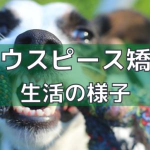 【歯列矯正】マウスピース矯正による生活の様子