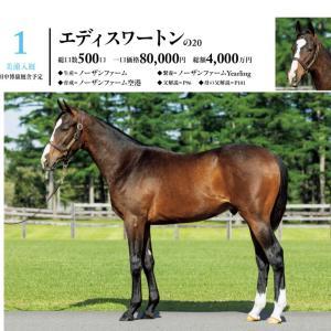 シルク 2021募集馬 関東馬候補