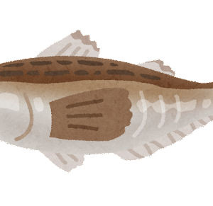 一番美味い魚wwwwwwwwwwwwwwwwwwwwwwwwwwwwwwww