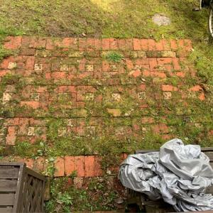 雑草抜きと煉瓦敷きの苔取り