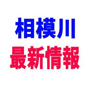 超最新!相模川情報!!