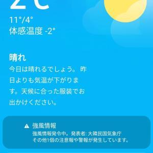 2℃の気温と炊飯器で簡単な薬食【약식】韓国のおこわ