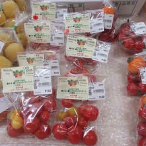 自然農の野菜出荷情報 若採りは美味しいのか?