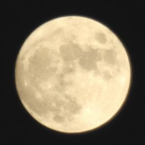 中秋の名月前夜
