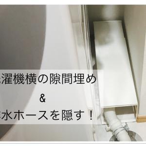 洗濯機横の隙間15cmに置いてホースを隠すものいろいろ