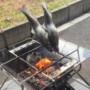 【キャンプ飯】ロゴス焚き火台で作る(囲炉裏風の)魚の串焼き