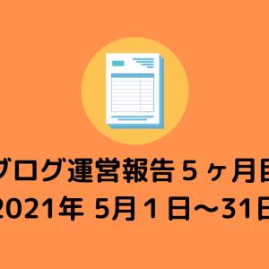 【ブログ運営報告書】5ヶ月でどれくらいPV数は伸びたのか