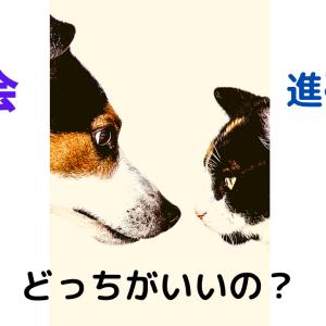 【大学受験】Z会と進研ゼミ どっちがいいの?【高校生】