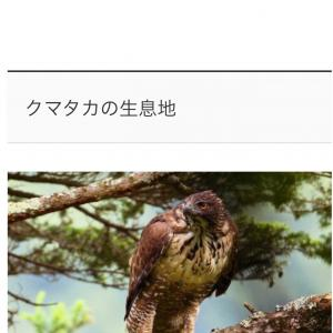 Go to 能登島に向けて(1富士2鷹3なすび を求めて)