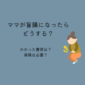 【盲腸】ママが虫垂炎になったらどうする?かかる費用は?保険は必要?