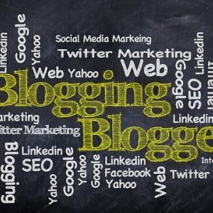 ブログを開始して2カ月経ちました 現在のブログの訪問者数を公開します