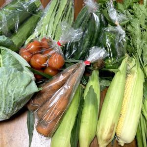 久松農園の野菜便