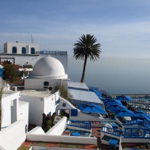 【シディブサイド】地中海がキラリと眩しいチュニジアの白と青の街