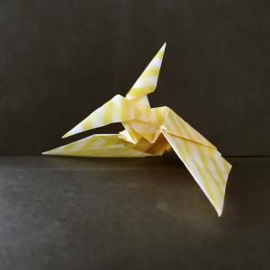 おりがみ:プテラノドン(Origami:Pteranodon)