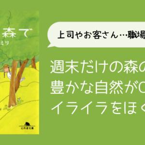 【職場のイライラに共感】【仙人みたいな早川さん】益田ミリ『週末、森で』感想と素敵なシーン※ネタバレあり