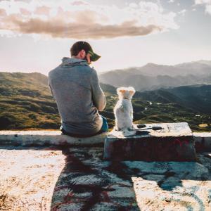 【犬語】が分かれば愛犬ともっと仲良くなれる